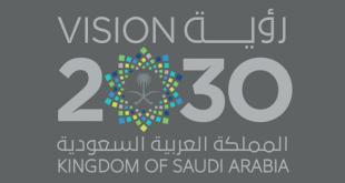 Neden 2030 Vizyonu'nun beşinci yıldönümü kutlanıyor?