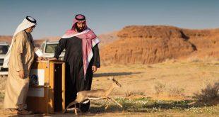 El-Ula turizm projesi Suudi Arabistan'a 32 milyar dolar kazandıracak
