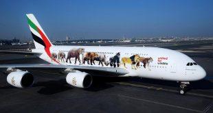 Gökyüzünün en renkli uçakları o ülkede