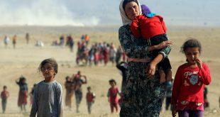 Irak Meclisi, DEAŞ'ın elinden kurtarılan Ezidi kadınlar için yasa çıkardı