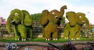 Baharda Dubai Miracle Garden'ın keyfini çıkarın