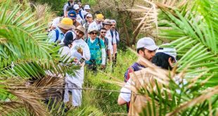 Taif'in güneyinde Hiking yaptılar