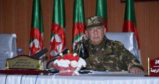 Cezayir Ordusu: Politik beklentilerimiz yok