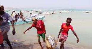 Birleşik Arap Emirlikleri, Yemen'de 24 balık avlama merkezi açtı