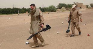 MASAM Yemen'de Husi milislerce döşenmiş 901 mayını temizledi