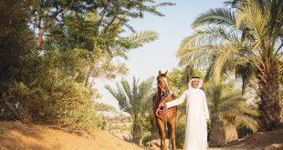 Dünyanın en pahalı at yarışı Suudi Arabistan'da