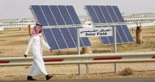 Fosil yakıt üreticisi Suudi Arabistan, Ortadoğu'nun yeşil enerji liderleri arasına girdi