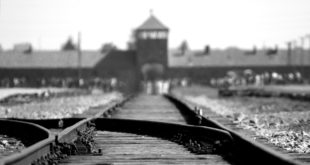 Auschwitz'in Müslüman kurbanları