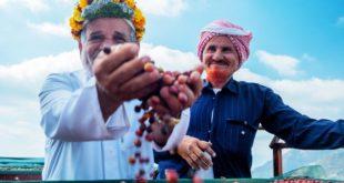 Suudi Arabistan'ın yüzyıllık Khawlani kahve üretimi sanatı