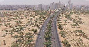 Yeşil Riyad Programı'nın ilk aşaması başlatıldı