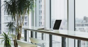 BAE'de kendi şirketinizi kurmak için uzmanlardan 5 ipucu