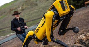 Ürkütücü köpekleriyle tanınan Boston Dynamics, şimdi de kuş robotlarıyla lojistik sektörüne giriyor
