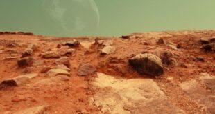 Bilim insanları Mars'ta böceklerle medeniyet kurulabileceğini duyurdu
