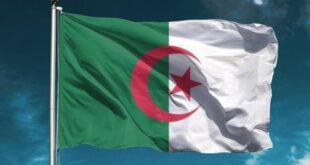 Cezayir'de parlamento seçimlerinde kıyasıya rekabet yaşanıyor