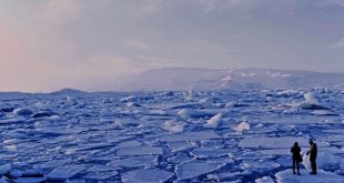Ünlü iklimbilimci: 2020, 2016'nın sıcaklık rekorunu kıracak mı?