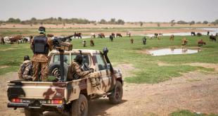 Afrika Birliği, Mali'nin üyeliğinin askıya alındığını duyurdu