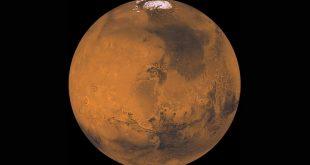 NASA deneyi dünyalı yaşam formlarının Mars atmosferinde hayatta kalabileceğini gösterdi