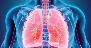 Kovid-19 akciğerlere nasıl zarar veriyor?