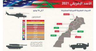 """Afrika kıtasının en büyük askeri tatbikatı """"Afrika Aslanı 2021"""", Batı Sahra'yı da kapsayacak"""