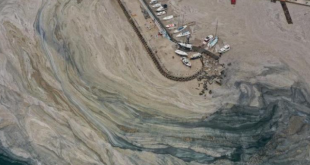 Marmara Denizi'ndeki müsilaj daha büyük felaketlerin habercisi olabilir